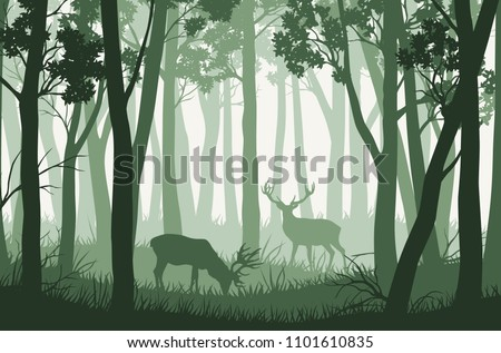 vector green forest landscape