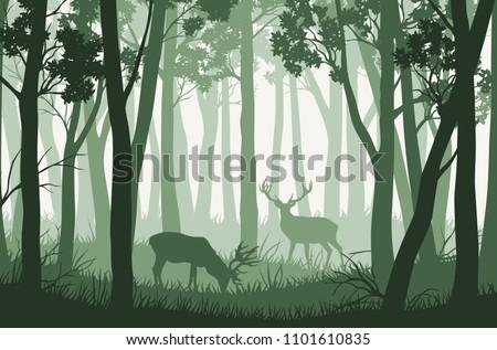 vector green forest landscape
