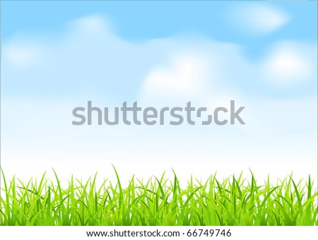 vector green grass and blue sky