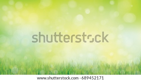 vector green grass  nature
