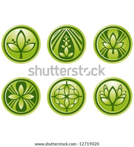 Vector green logo icon graphic symbols