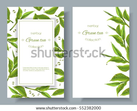Vector green tea banners with tea leaves and drops on white. Design for packaging, tea shop, drink menu, homeopathy and health care products