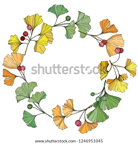 Vector. Green, yellow and orange ginkgo leaf. Leaf plant botanical garden floral foliage. Leaf plant botanical garden floral foliage. Frame wreath.
