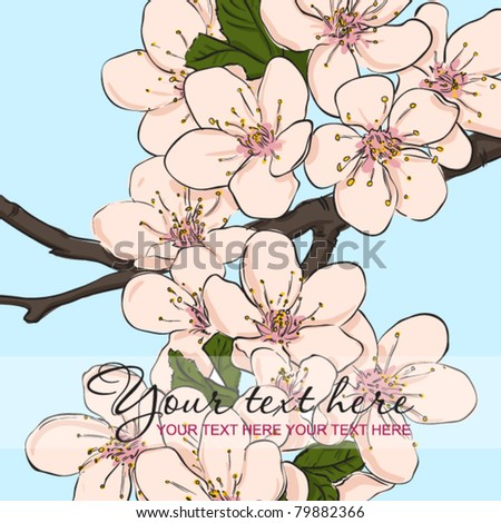 Vector greeting card with blossom cherry flowers. Place for your text.