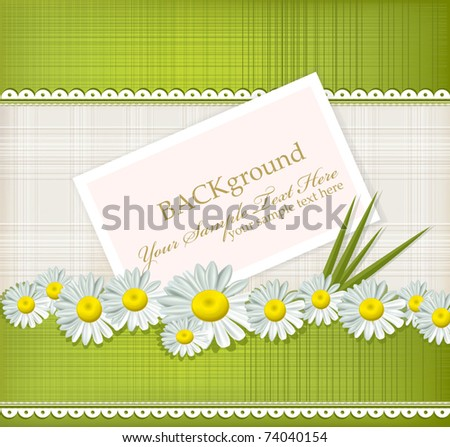 Vector greeting card with daisies and abstracts background