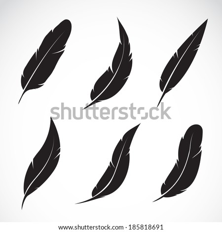 Shutterstock Vector group of feather on white background
