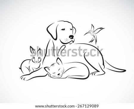 vector group of pets   dog  cat