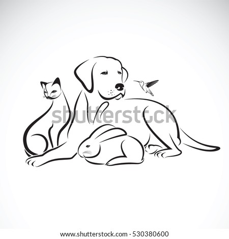 vector group of pets on white