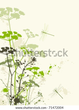 vector grunge floral background with dragonfly