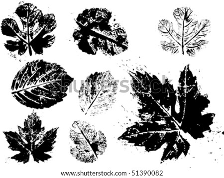 vector grunge leaves