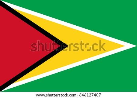 Vector Guyana flag, Guyana flag illustration, Guyana flag picture, Guyana flag image