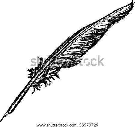vector - hand draw quill isolated on background