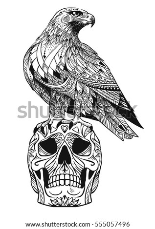 vector hand drawn bird of prey