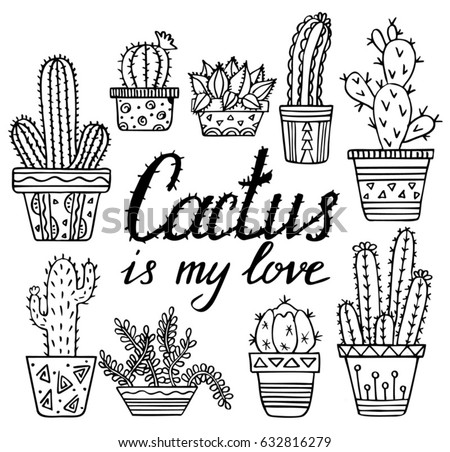 vector hand drawn cactuses and