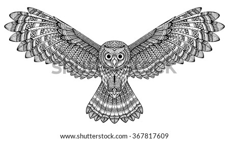 vector hand drawn flying owl