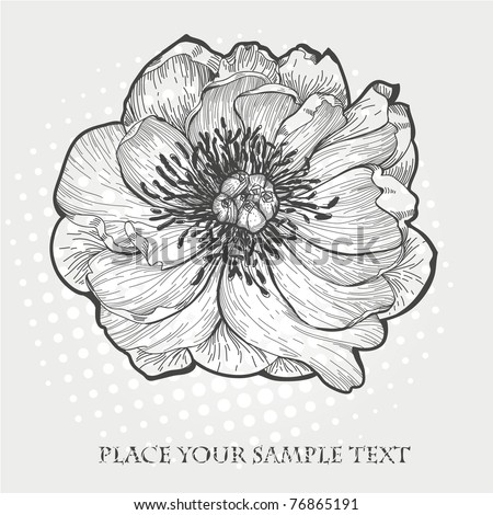 vector hand drawn  illustration of a single peony