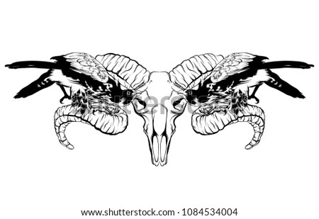 Vector hand drawn illustration of falcon and ram skull isolated. Surreal tattoo artwork  Template for card, poster, banner, print for t-shirt, placard.