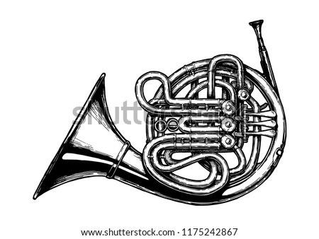 Vector hand drawn illustration of French horn in vintage engraved style. Isolated on white background.