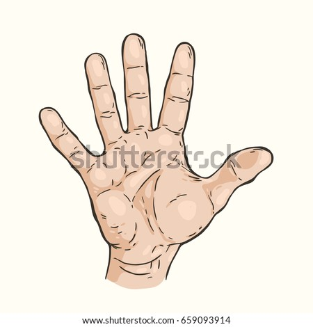 Vector hand drawn illustration of the hand gesture. Five fingers,