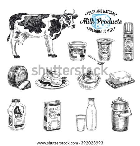 Vector hand drawn Illustration with milk products. Sketch. Vintage style. Retro background.