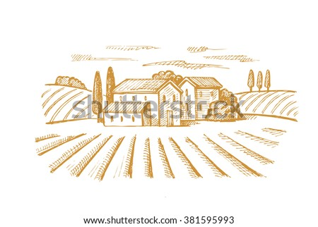 vector hand drawn image of