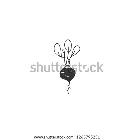 Vector hand drawn object, logo element, beet. Farm and organic food theme. Isolated symbol for business branding and identity, for farmers markets, fairs, and grocery stores.