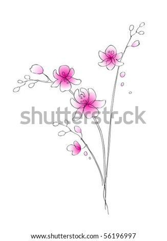 Vector hand-drawn orchid
