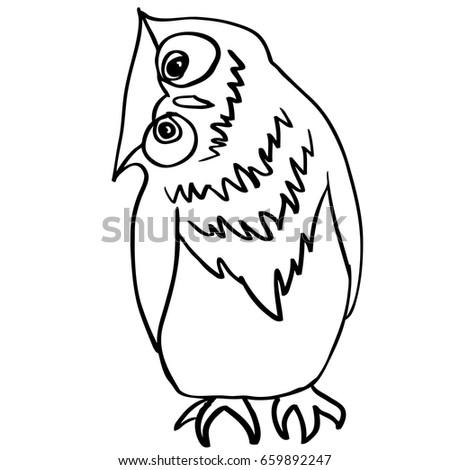 vector hand drawn owl sitting