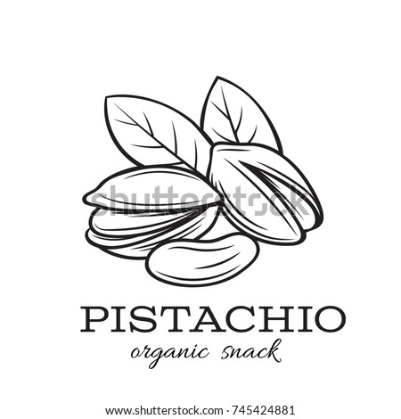 Vector hand drawn pistachio nuts for template label, packing and emblem farmer market design. Retro sketch style.