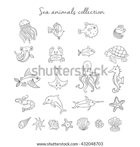 vector hand drawn sea elements