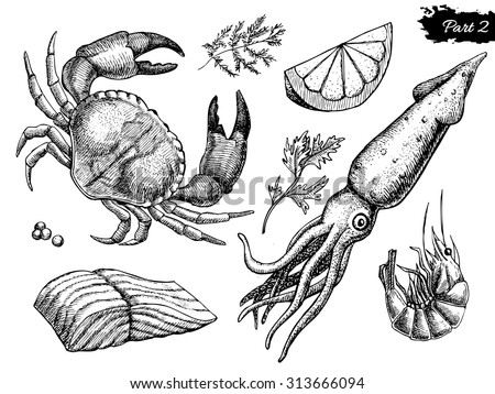 vector hand drawn seafood set....