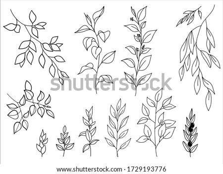 vector hand drawn set of