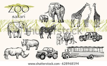 Vector hand drawn sketched animal set. Zoo safari: elephant, zebra, lion, rhino, giraffe and safari bus, safari jeep.