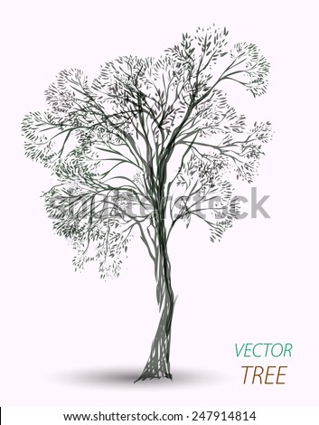 vector hand drawn tree isolated