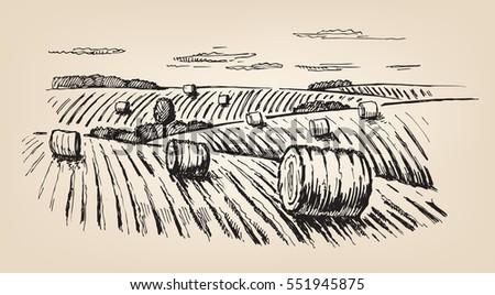 vector hand drawn village