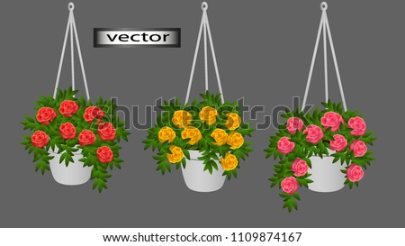 vector hanging pots with