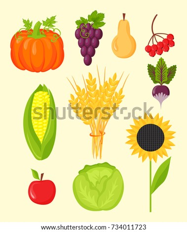 vector harvest flat icons