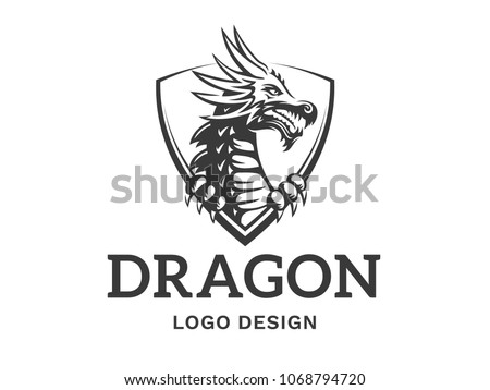 vector head of a dragon in the