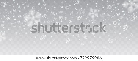 Vector heavy snowfall, snowflakes in different shapes and forms. Many white cold flake elements on transparent background. White snowflakes flying in the air. Snow flakes, snow background. #729979906