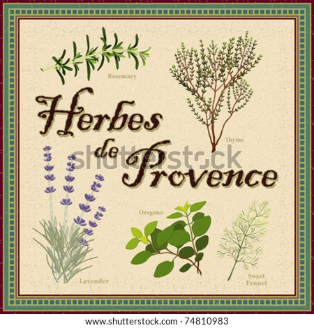 vector - Herbes de Provence. Blend of aromatic cooking herbs from southwestern France: Lavender, Rosemary, Thyme, Fennel, Oregano. Antique mosaic frame. EPS8 organized in groups for easy editing.