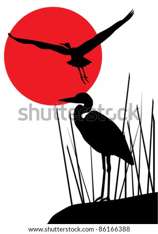 vector heron silhouettes and