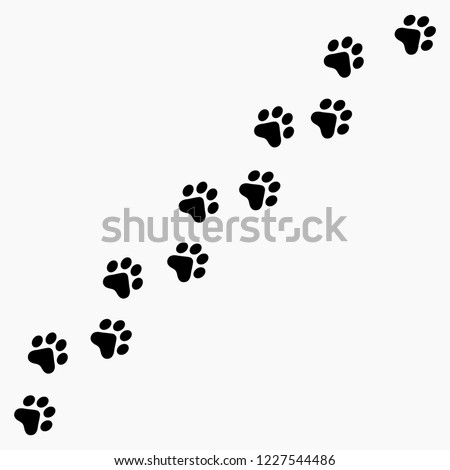 Vector high quality illustration of paw prints silhouette making a path on the ground - isolated on white background