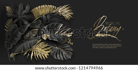 Vector horizontal banner with black and gold tropical leaves on dark background. Luxury exotic botanical design for cosmetics, spa, perfume, aroma, beauty salon. Best as wedding invitation card #1214794966