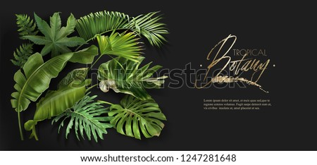 Vector horizontal banner with green tropical leaves on black background. Luxury exotic botanical design for cosmetics, spa, perfume, aroma, beauty salon. Best as wedding invitation card