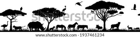 Vector horizontal seamless tropical african savannah with lions, zebra, vulture, heron, hyena, common warthog, rhinoceros, cheetah, gazelle, monkey, ostrich and crowned crane