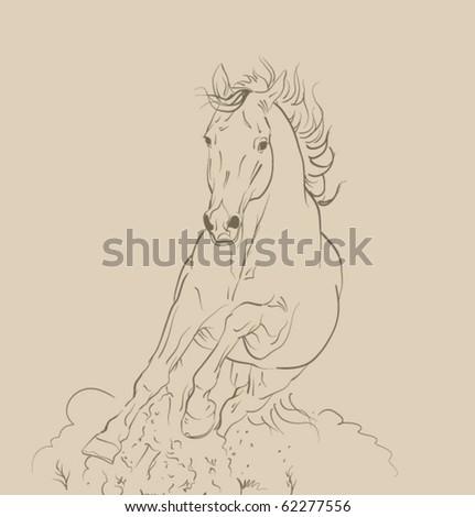 vector horse gallop