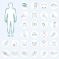 vector human anatomy, body pain, medical illustration