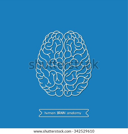 Appealing brain vector photographs
