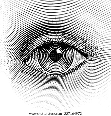 vector human eye in engraved