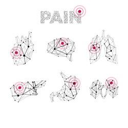 Vector human medical polygonal lines anatomy pain abstract illustration